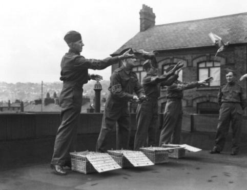 Breve storia delle comunicazioni militari