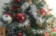 Una favola...L'origine dell'albero di Natale….