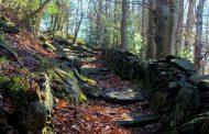 La strada del tempo... La Megalitica